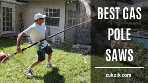 Best Gas Pole Saws – Smart Review and Buying Guide