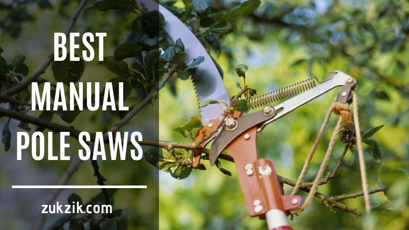 Top 5 Best Manual Pole Saws (Reviews & Buyer's Guide)